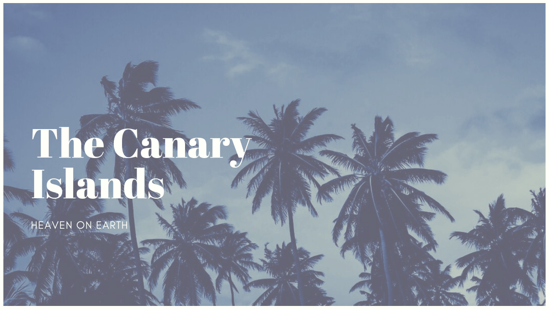 The-Canary-Islands